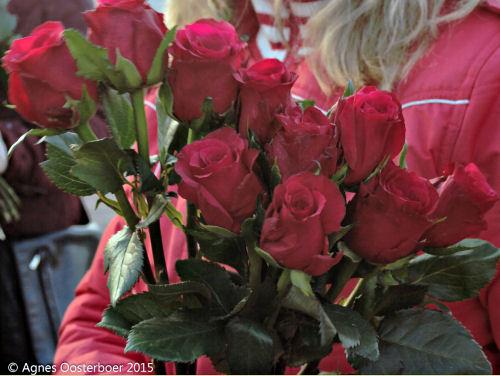 Maar natuurlijk waren er ook rozen!